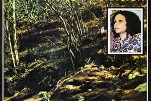 Sonia Silvestre: La nueva canción (1975)